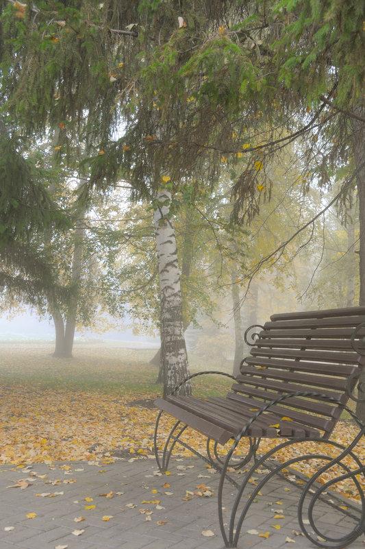 Утренний туман в осеннем парке - Сергей Тагиров