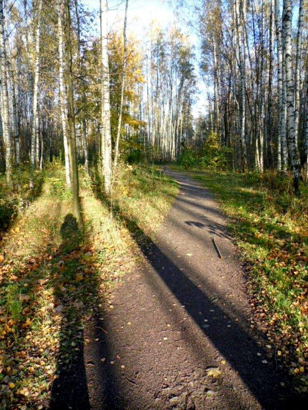 Осень,как она есть - Taisia_ZX
