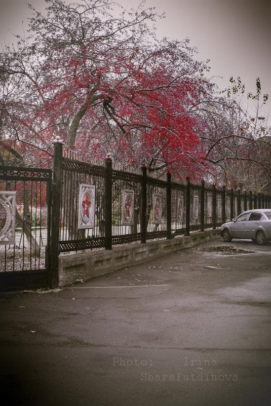 холод - Ирина Шарафутдинова