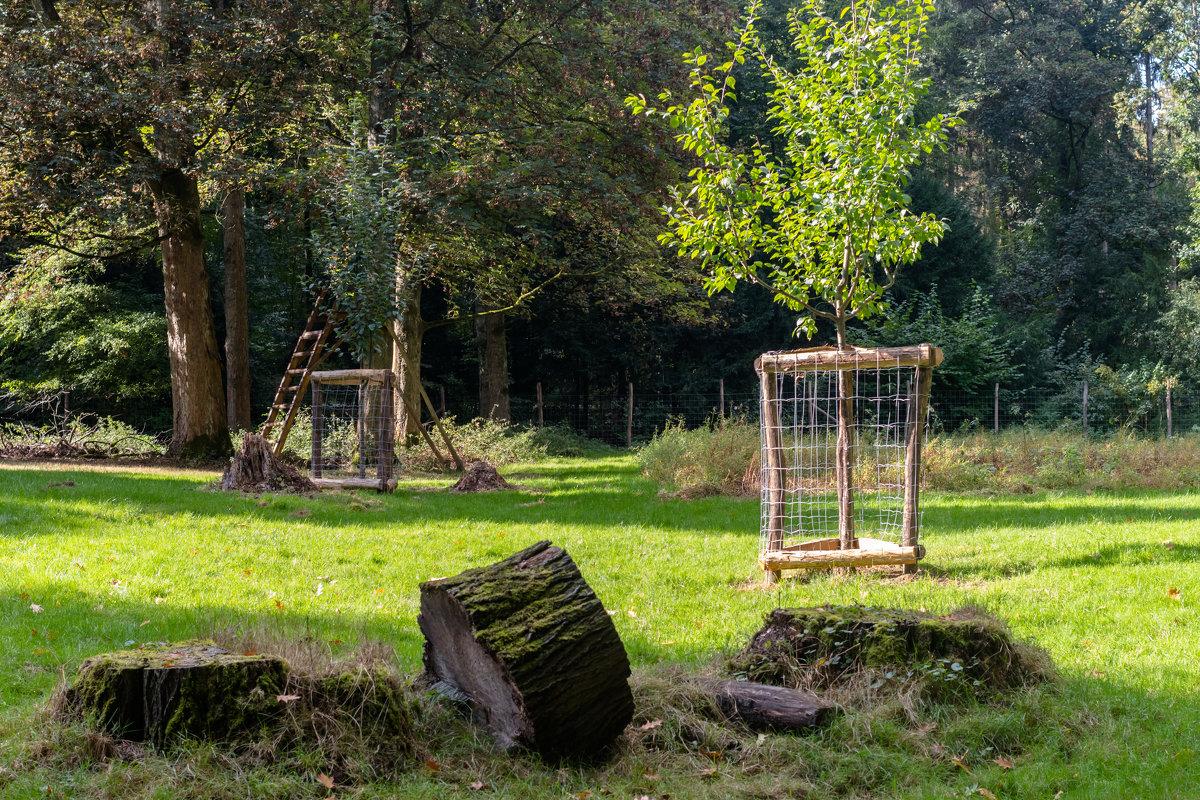 Wildpark, Düsseldorf - Witalij Loewin