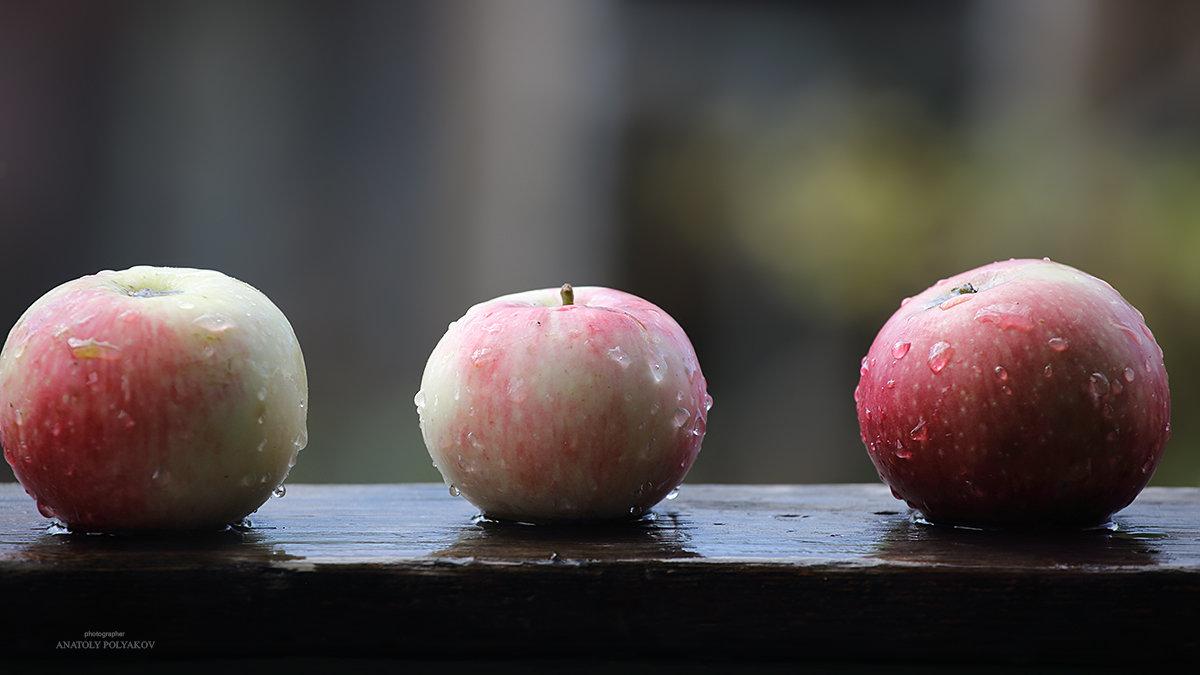 Три яблока... - Аnatoly Polyakov