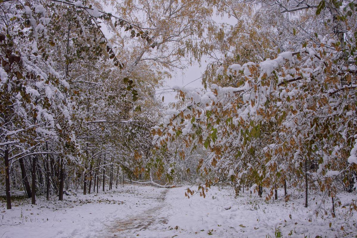 Первый снег---06 - Владимир Холодный