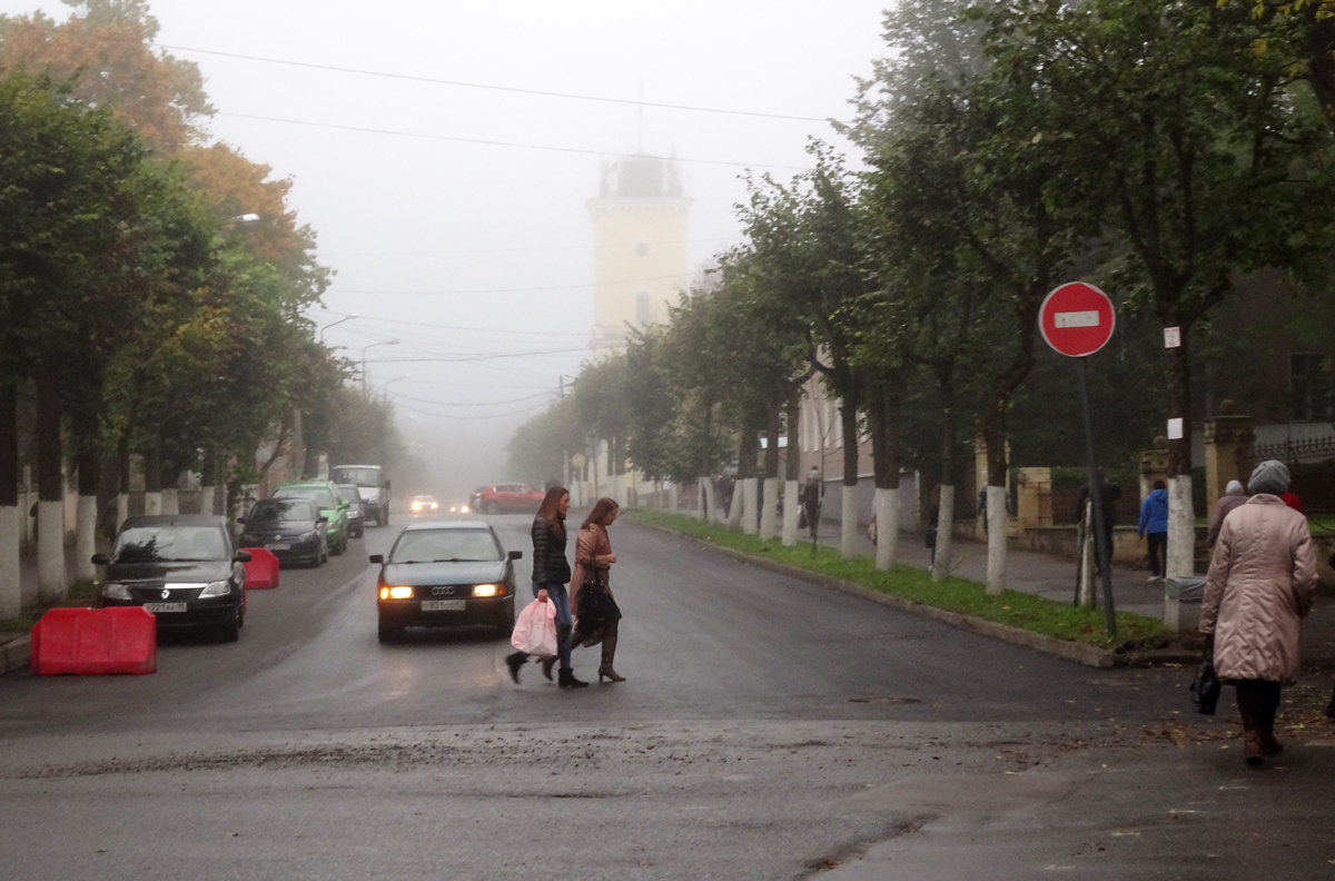 Туман в городе - Елена Смирнова