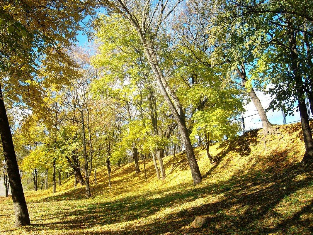 Осень - Андрей Буховецкий
