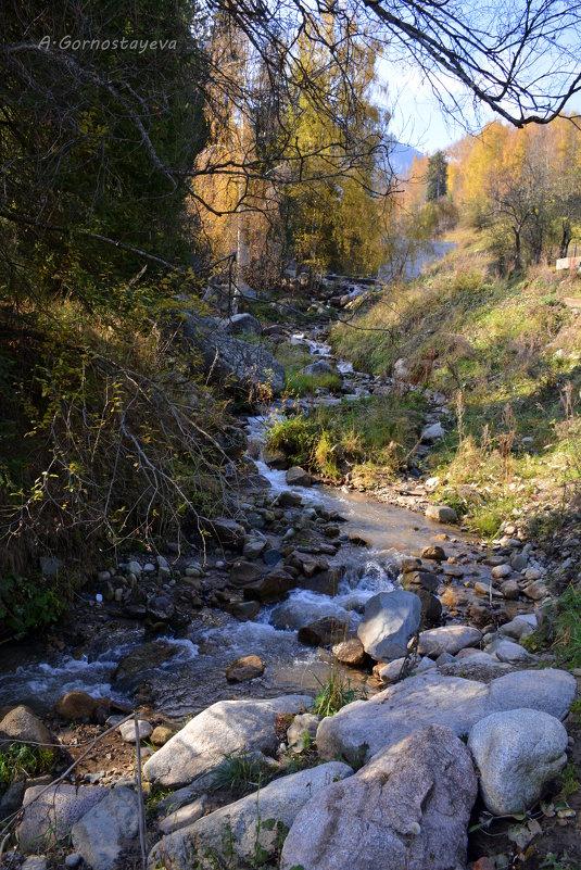 Течёт ручей,бежит ручей... - Anna Gornostayeva