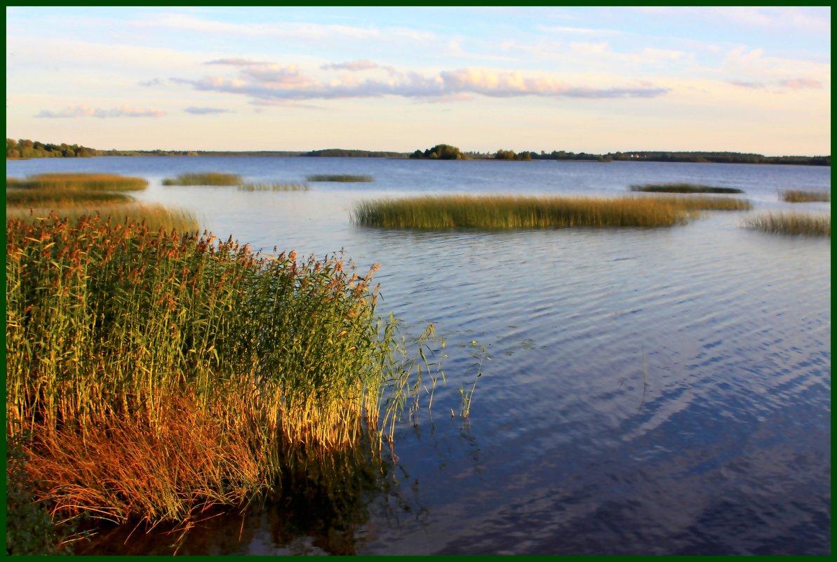 На озере вечернем - Наталья