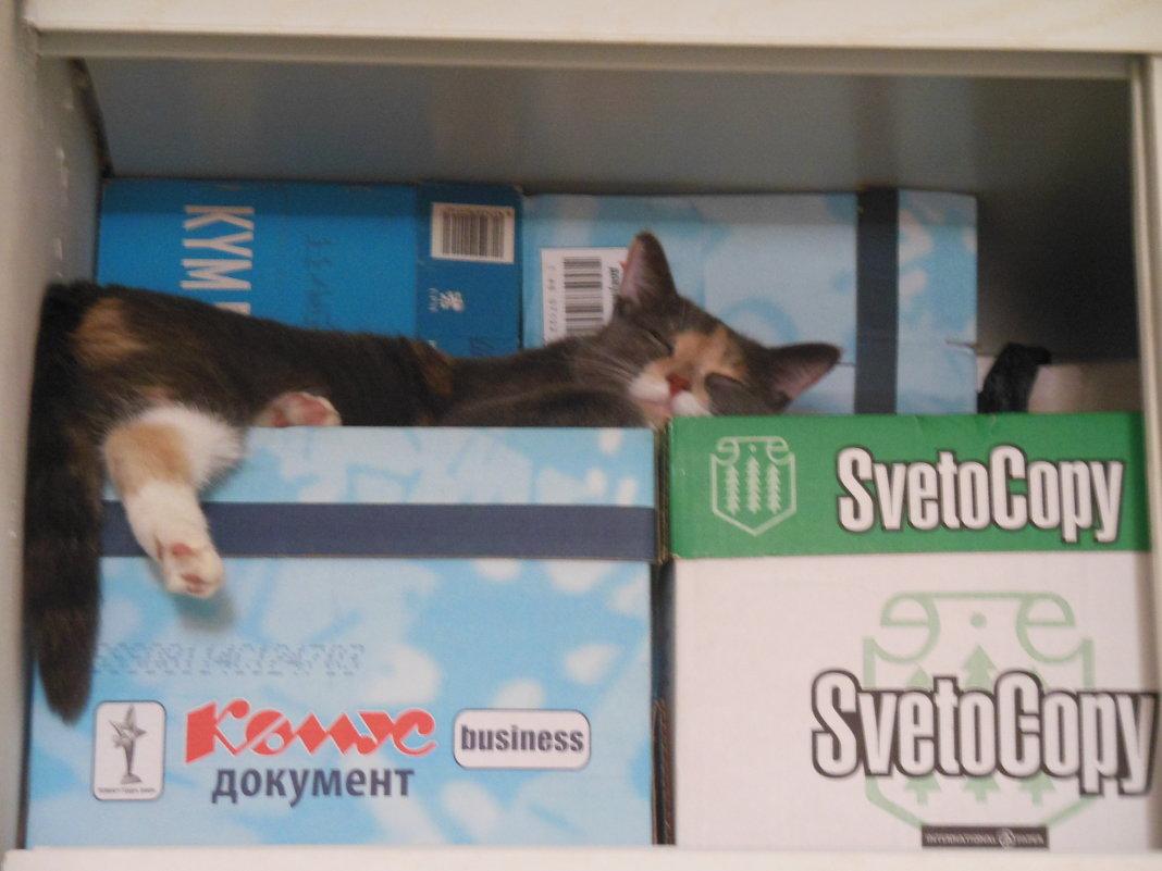 Как удобно спиться! - Татьяна