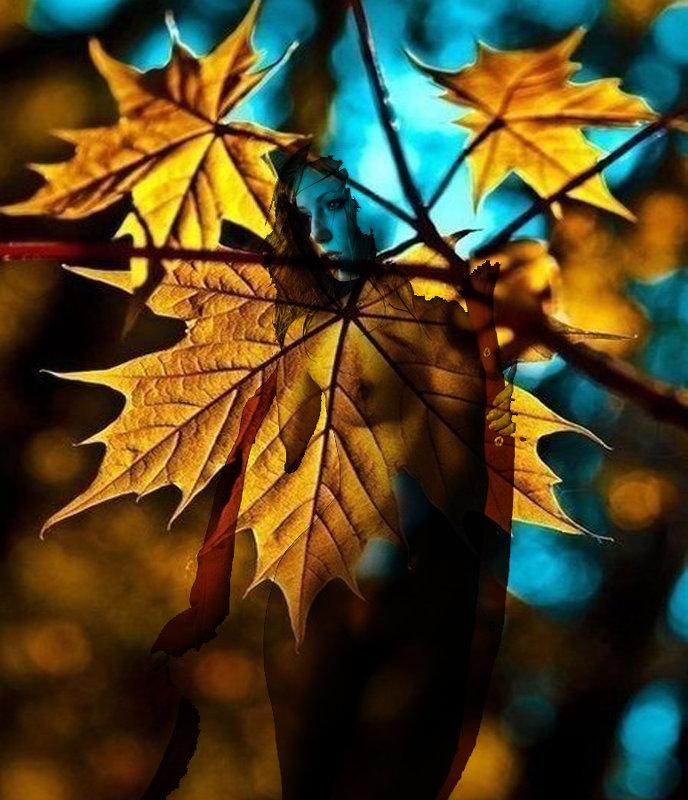Осеньая девушка - Сергей