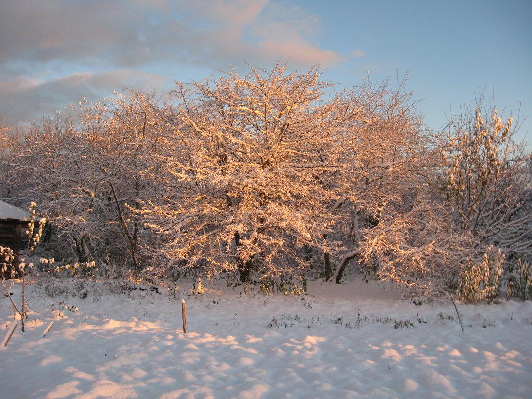 первый снег - Татьяна Васильева