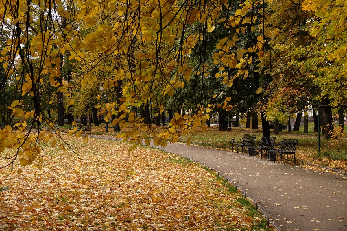 Осеннее... - tipchik