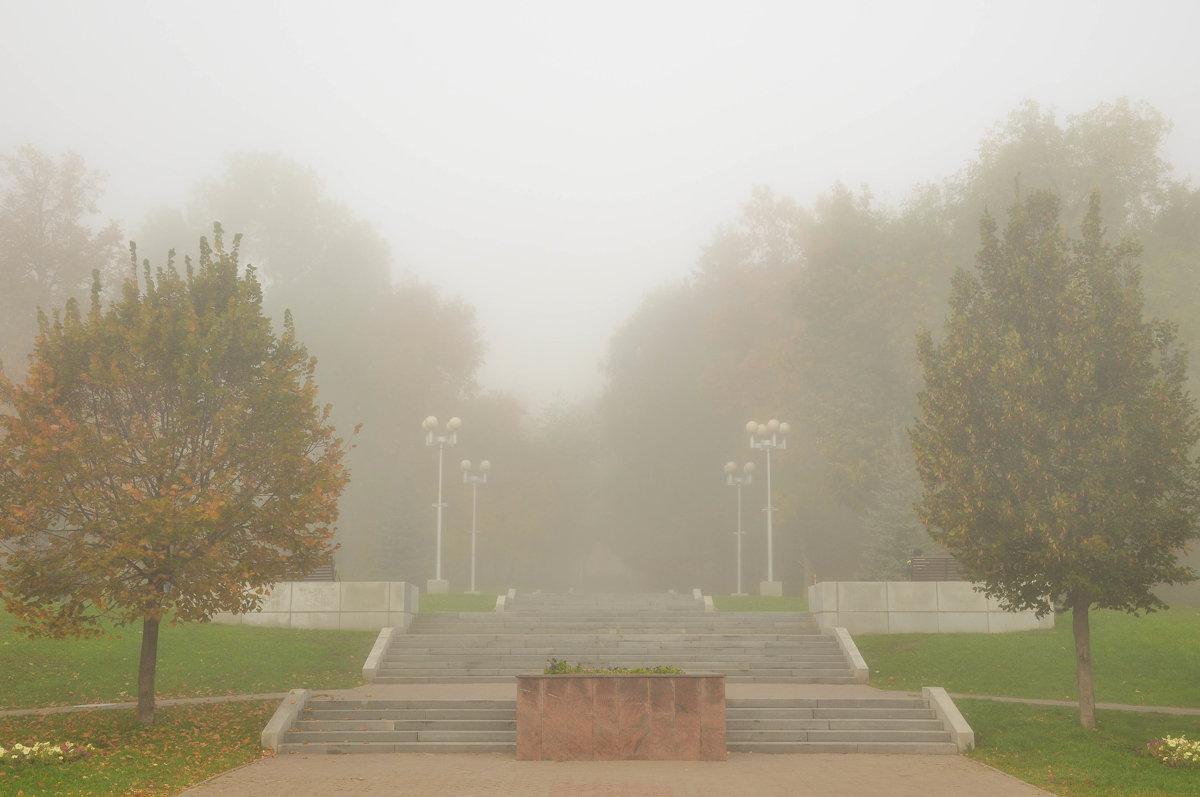 Осенний парк в утреннем тумане - Сергей Тагиров