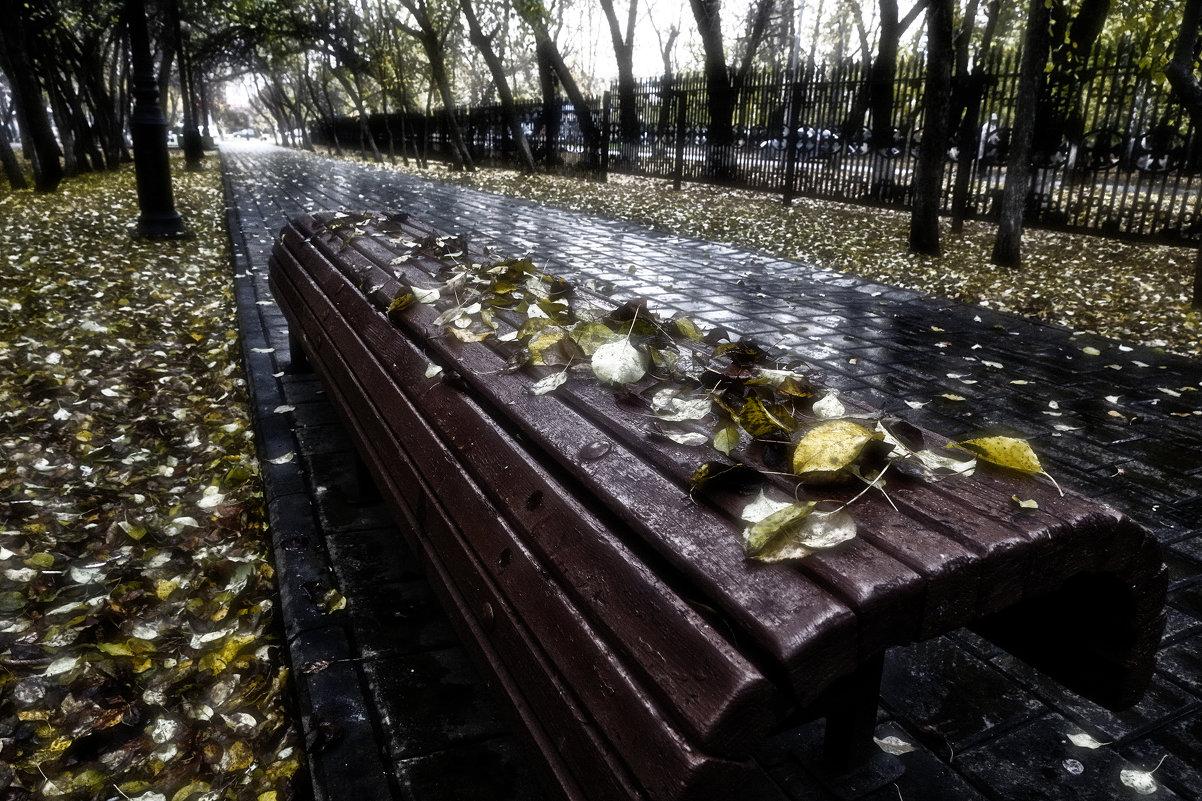 Осенний дождь - Сергей Елесин