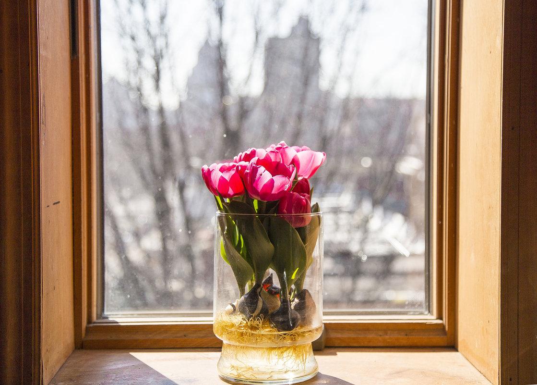 Весна - Эмма