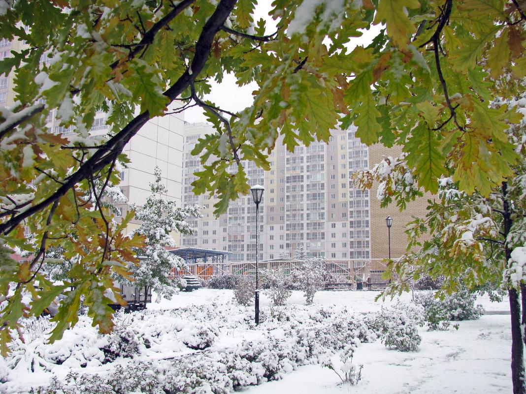 Первый снег - Татьяна Ким