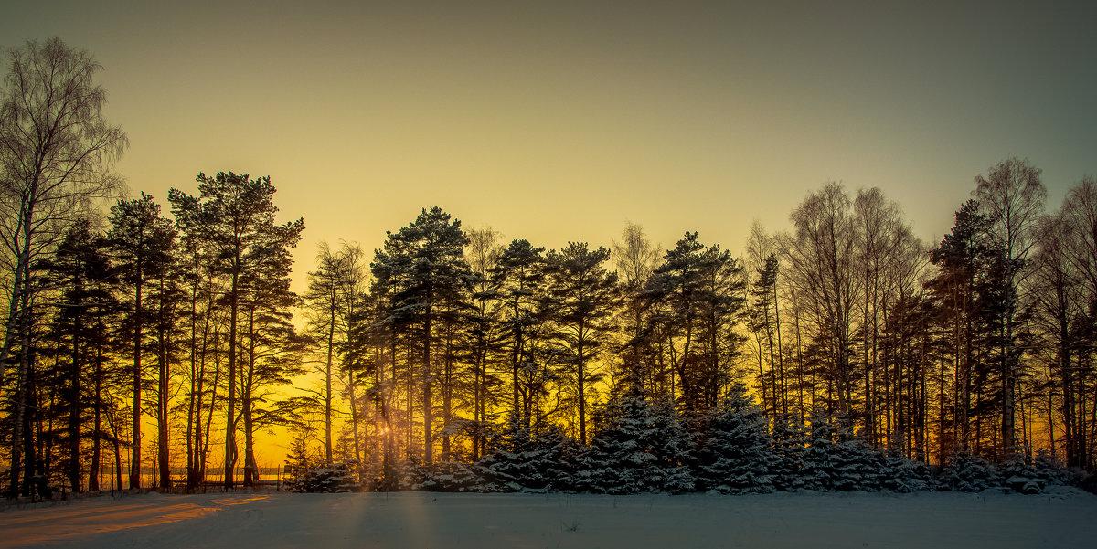 Зимний закат..... - Александр Сыроватка