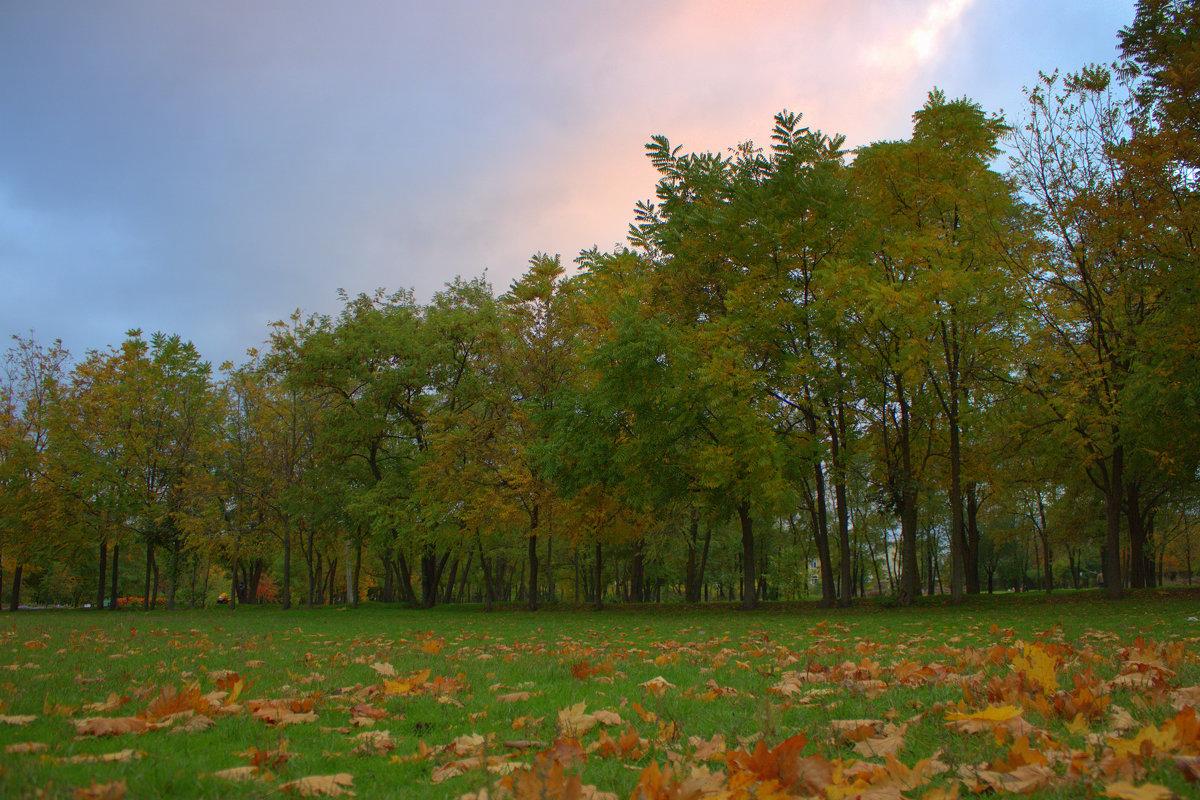 В Таганрогском парке - оксана косатенко