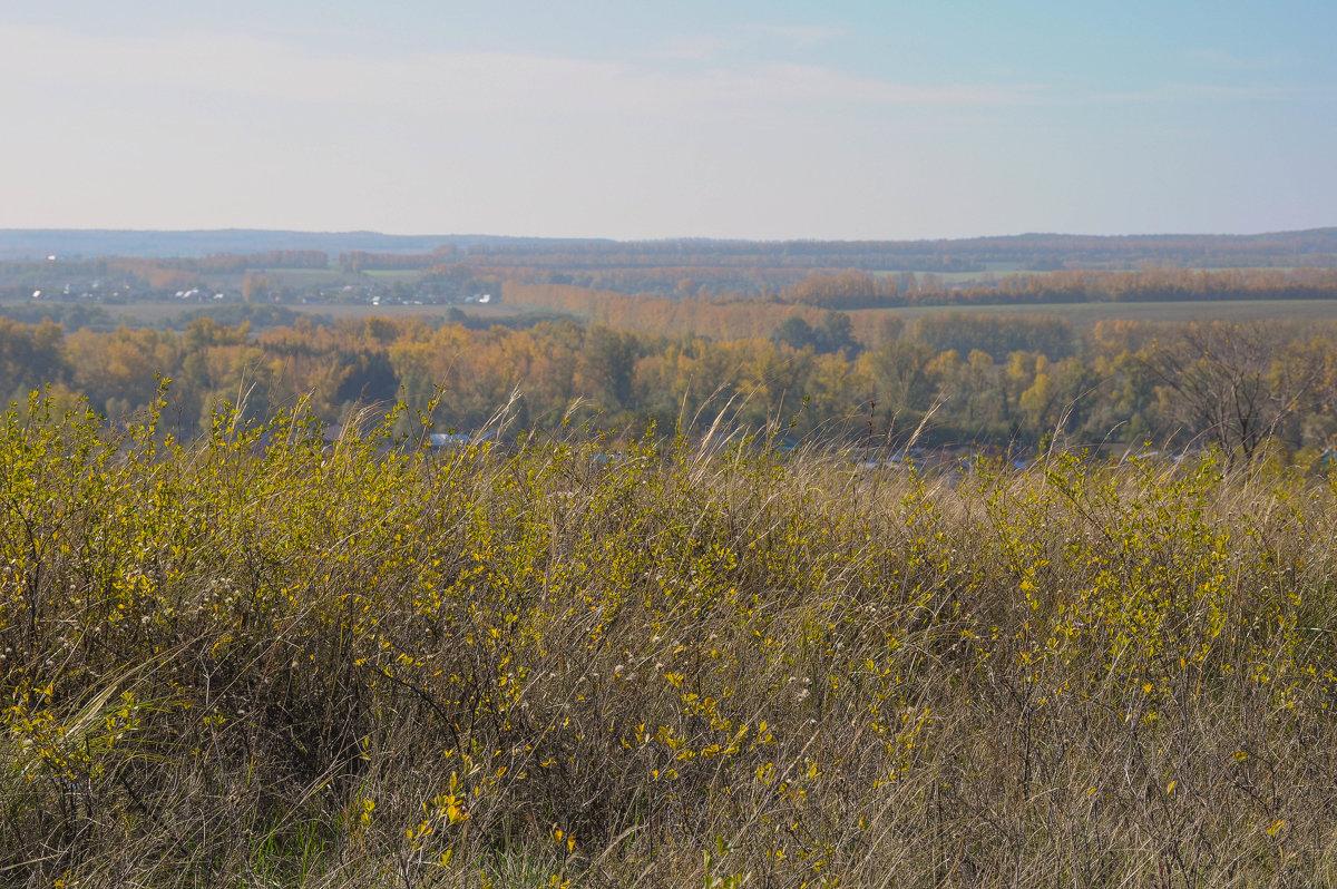 Осенний пейзаж - Сергей Тагиров