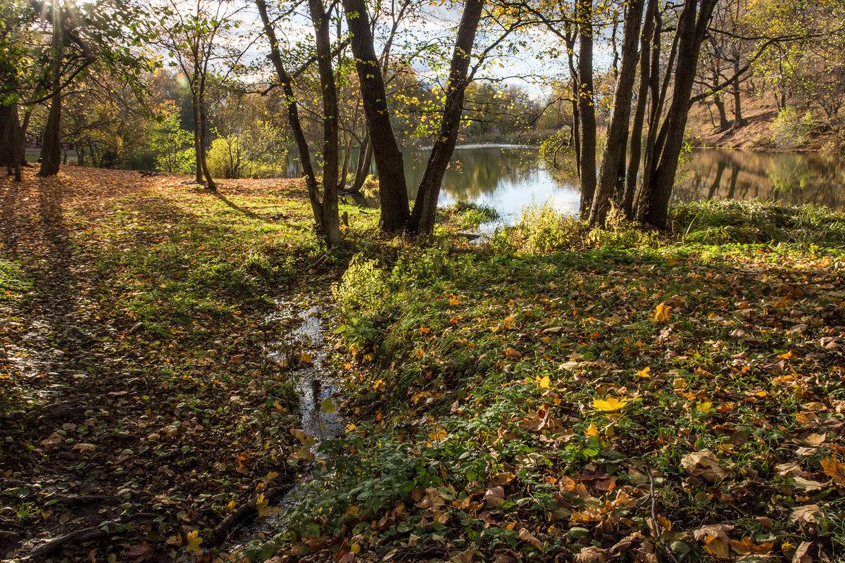 устье реки - Андрей ЕВСЕЕВ