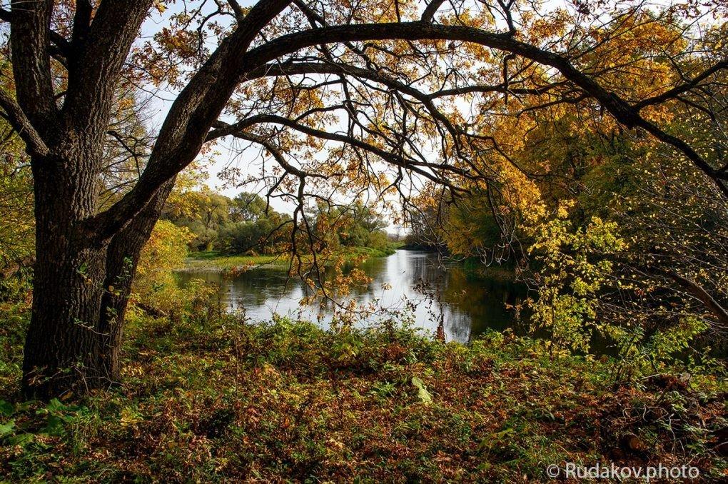 Осень в Воронинском заповеднике - Сергей