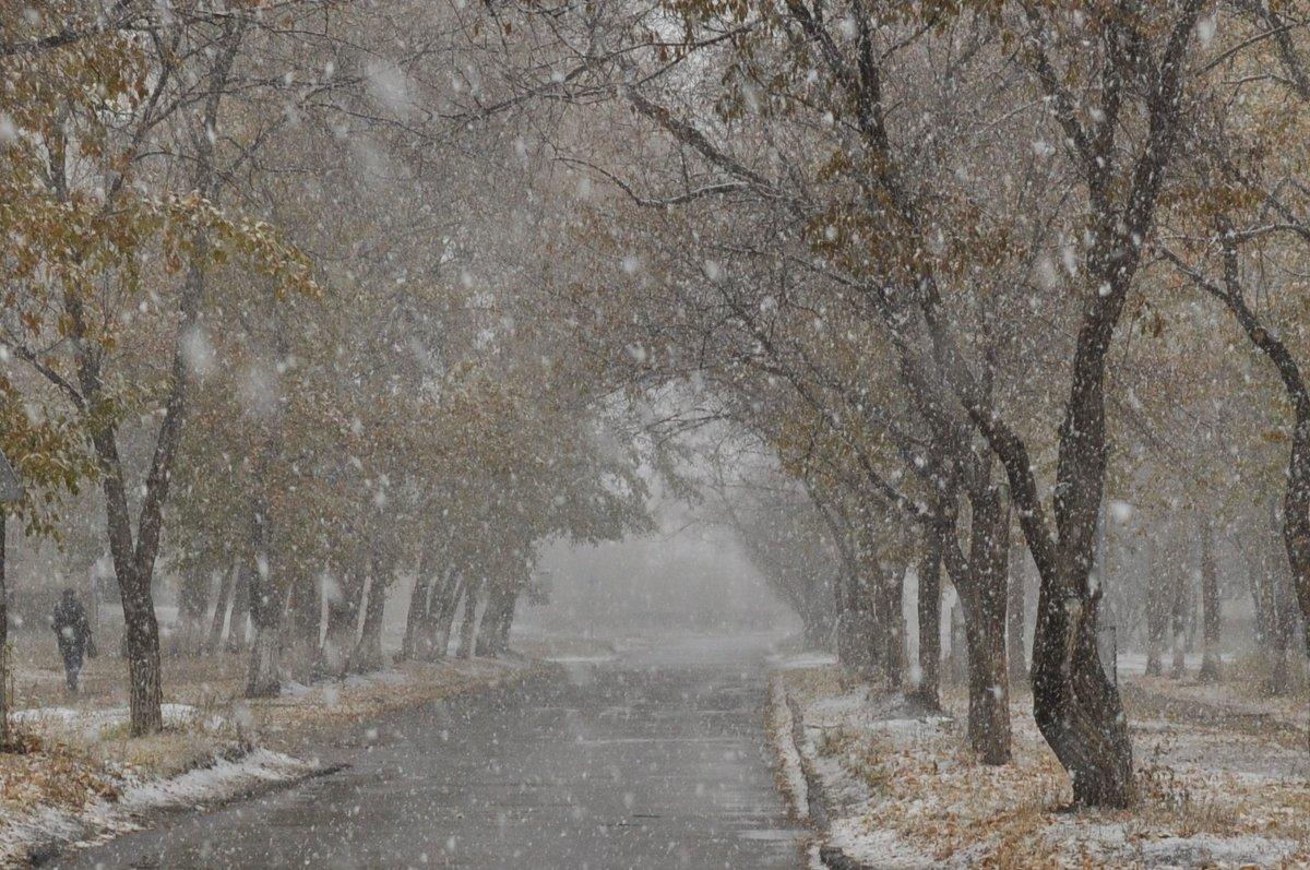 Осень - Майя Смехова