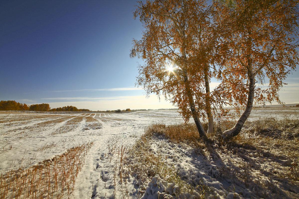 И слышатся песни, осени снежной 6 - Сергей Жуков