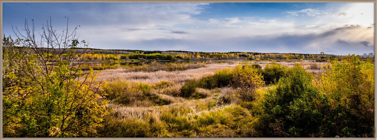 Панорама поймы реки Миасс - Марк Э