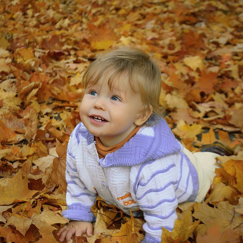 На ковре из желтых листьев - Милада Шестопалова