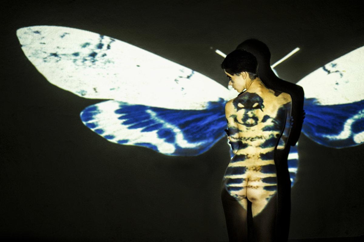 Рождение бабочки - Виталий