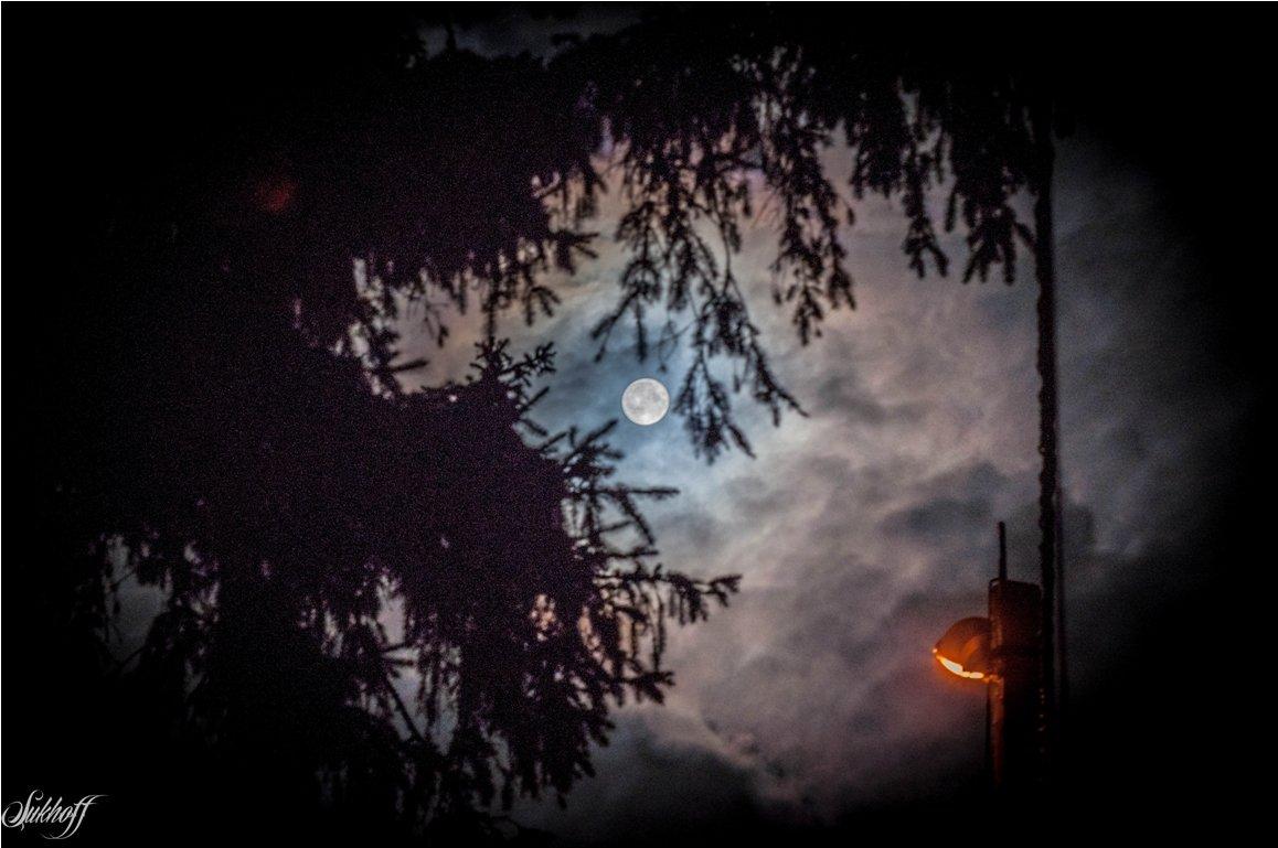 Зловещая луна - Денис