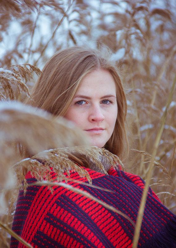 В камышах - Наталья