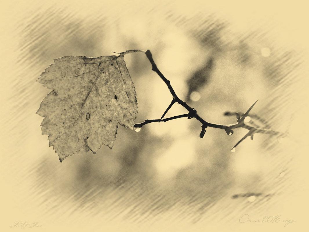 Осенняя. - aWa