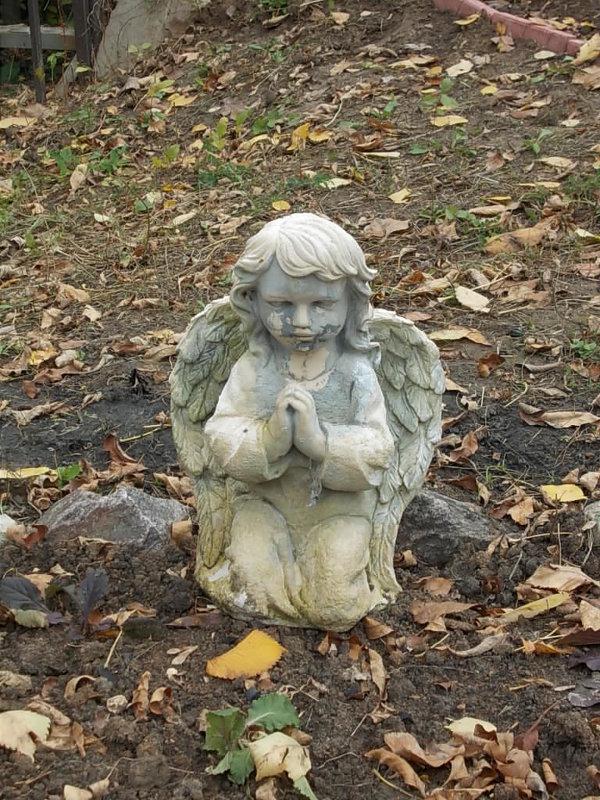 Ангел прилетел - Викторина Срыбна