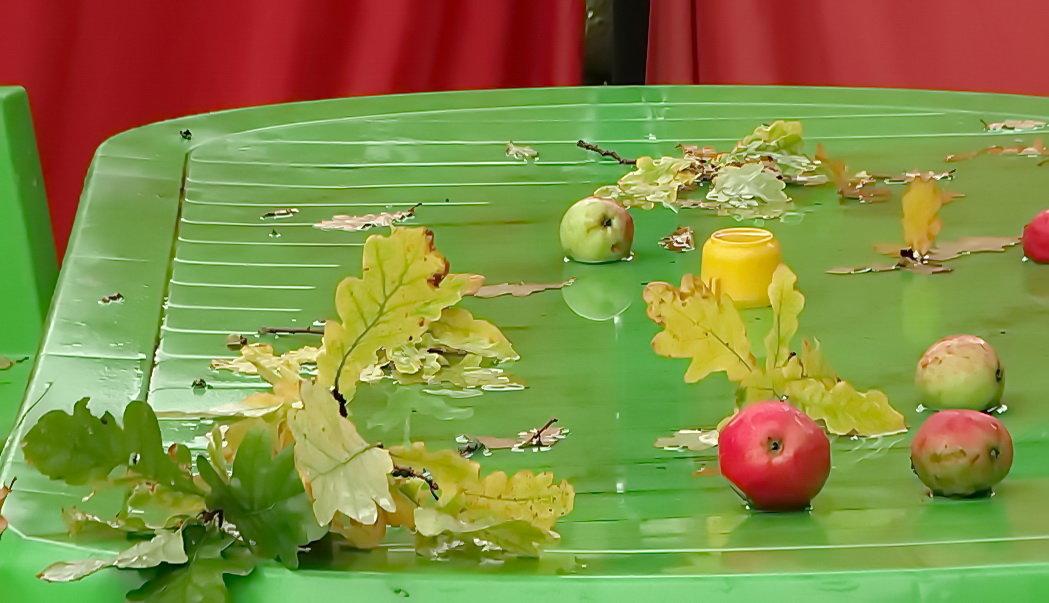 Столик,листва и яблоки - Владимир Гилясев