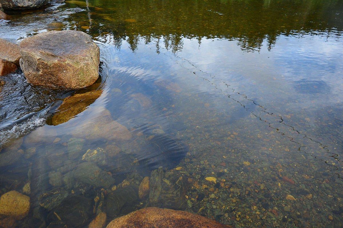 Река Нижняя Буйба - Андрей В