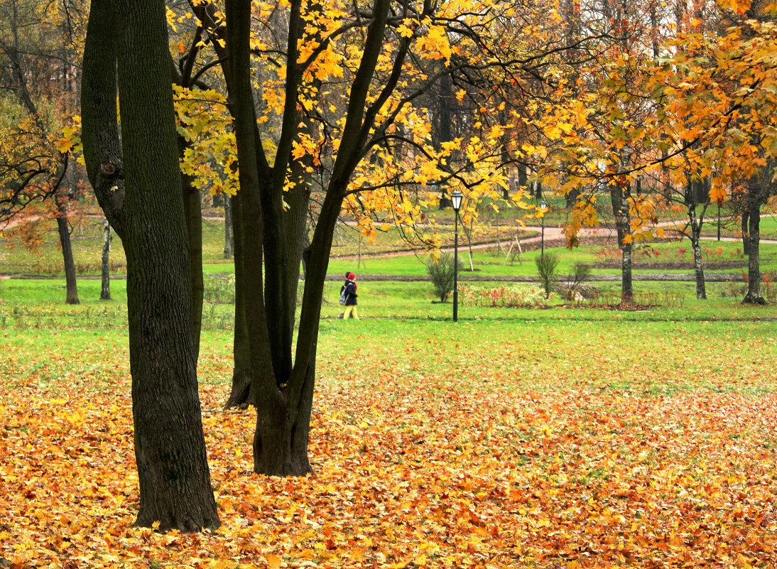 Осенний день на Куракиной даче - Ирина Румянцева