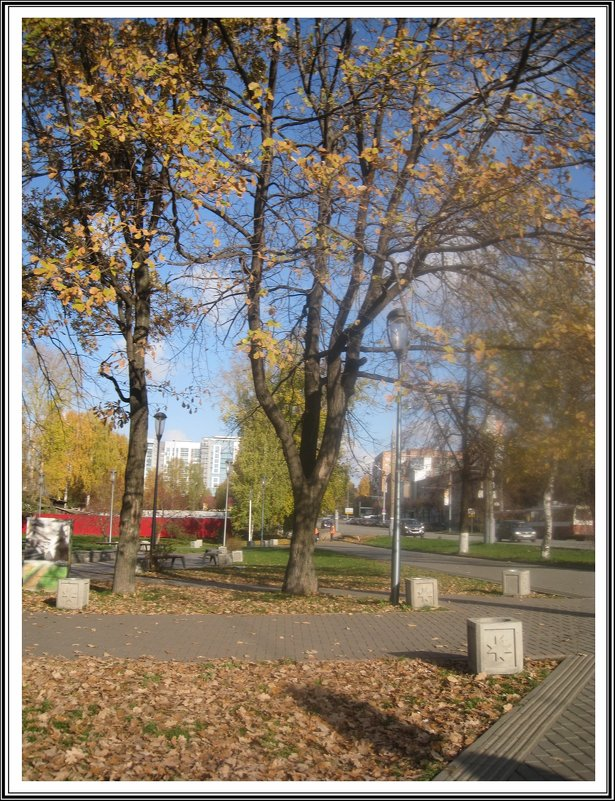 Осень в городе - muh5257
