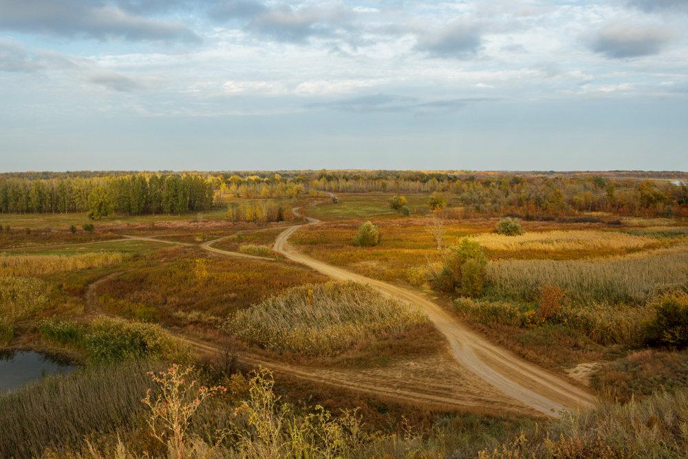 дорога к Волге - Надежда Щупленкова