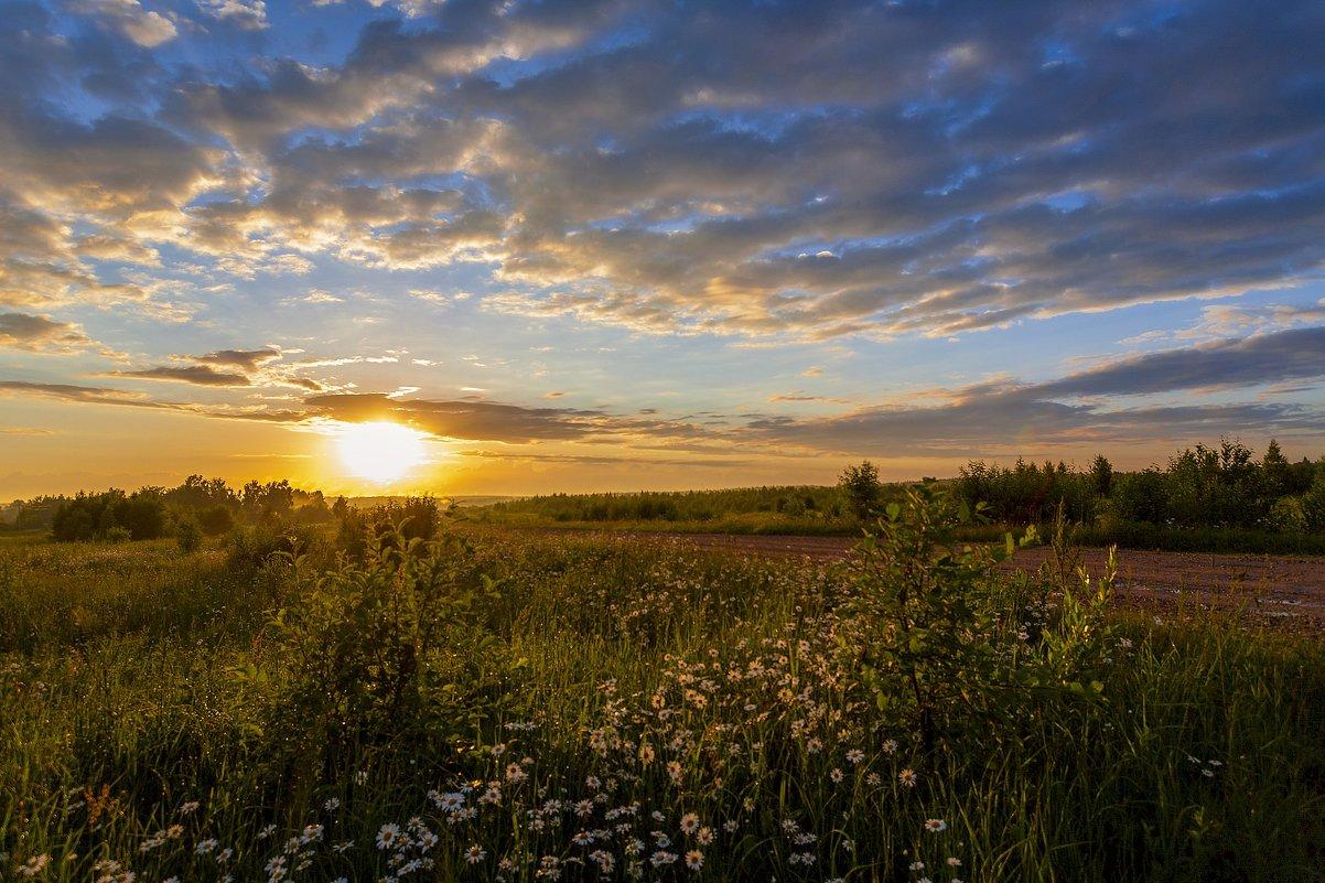 Тёплым летним вечером - Алексей Писарев