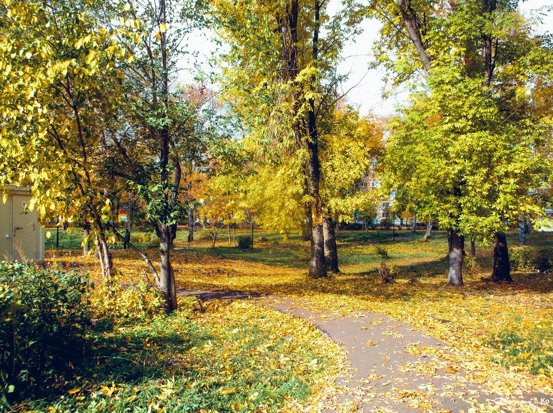 В парке - Вячеслав Баширов