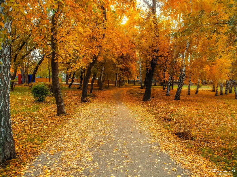 Осень - Вячеслав Баширов