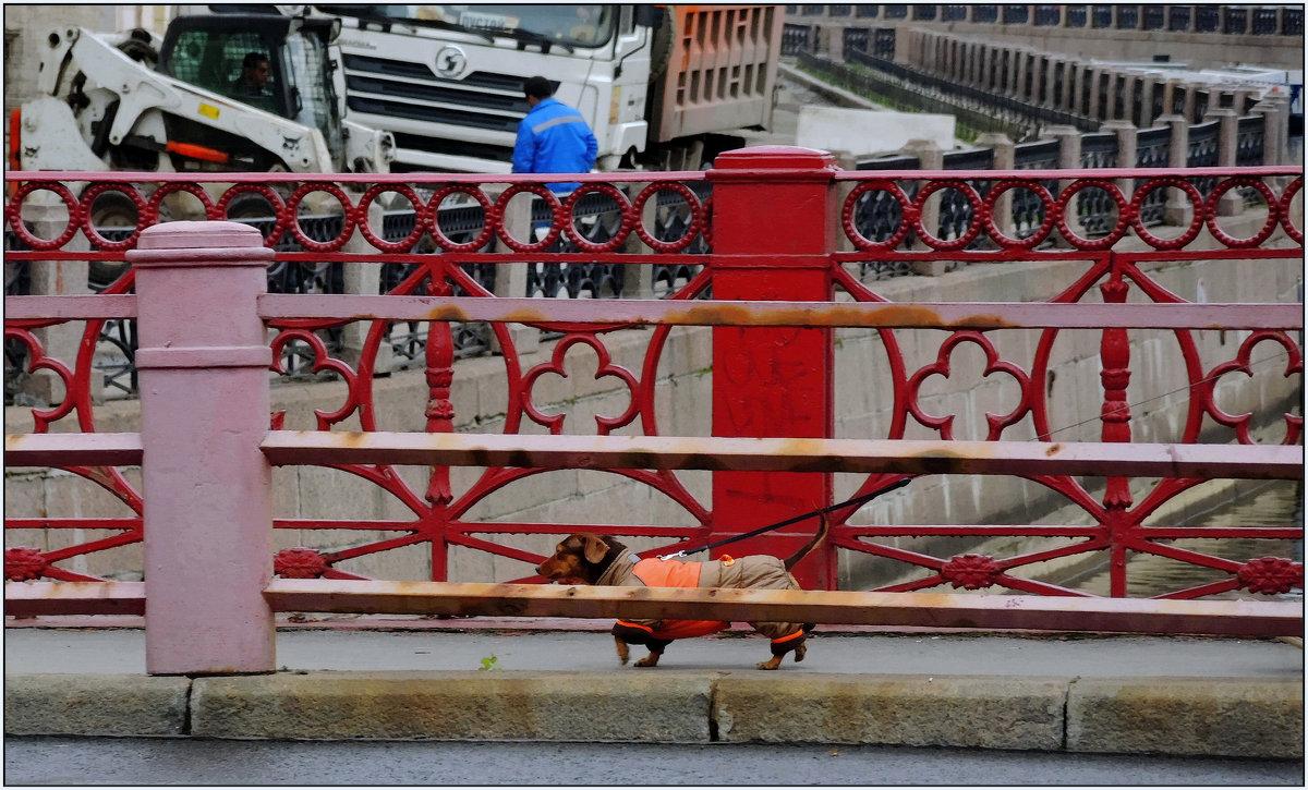 непарадный Красный мост - sv.kaschuk