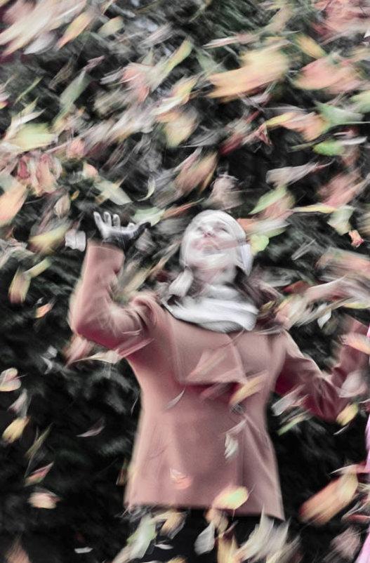 живопись листопада - Svetlana AS