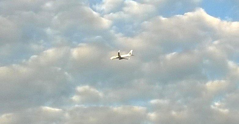 Смотрите в небе самолёт, а в самолёте том пилот... - Мила