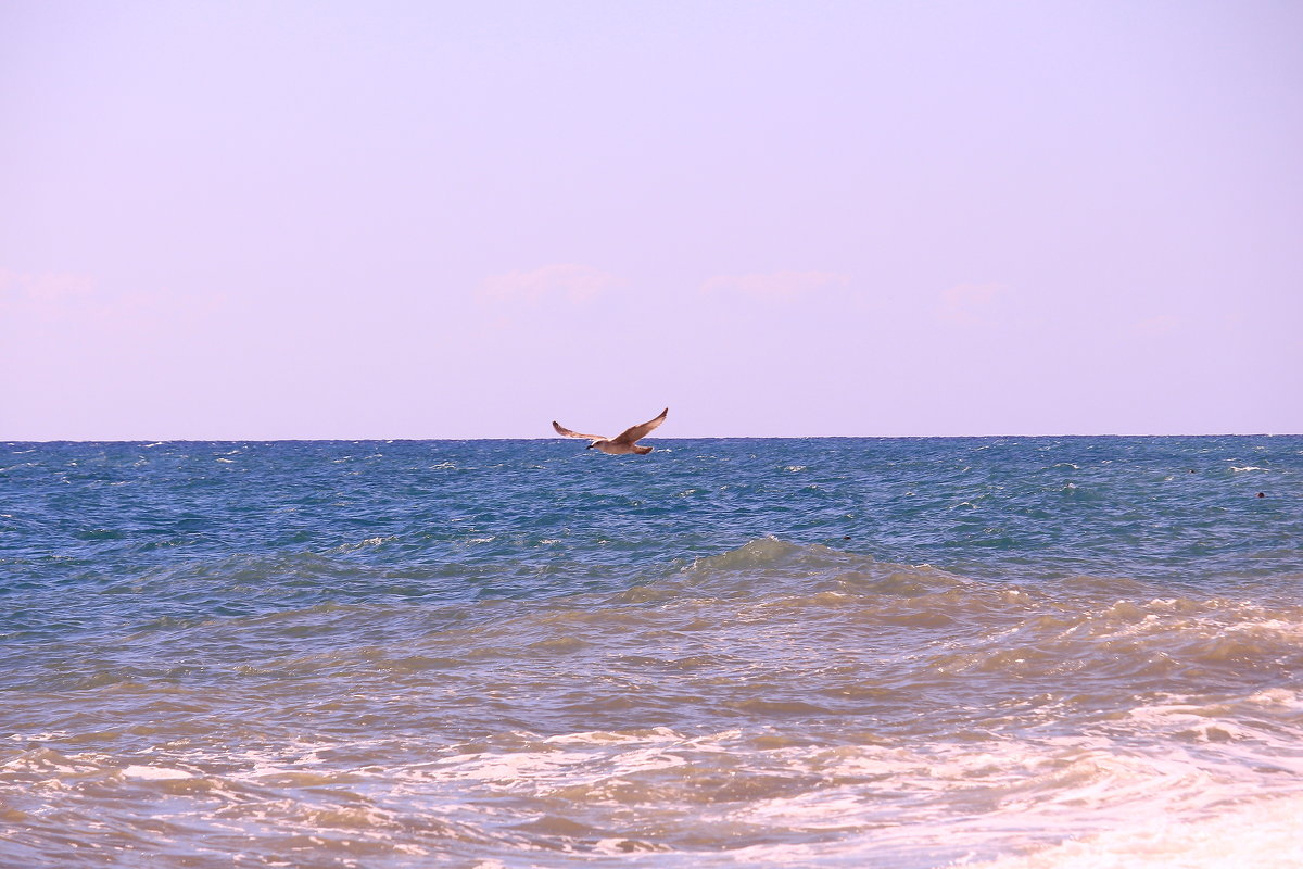 О, море, море - Татьяна Ломтева
