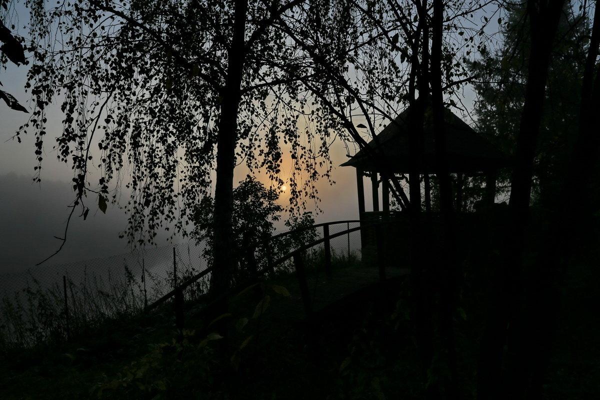 Утро на даче. - Пётр Сесекин