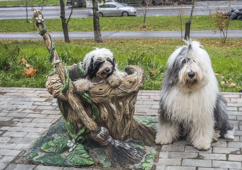 собачки в сказочном городе - баба Яга - Лариса Батурова