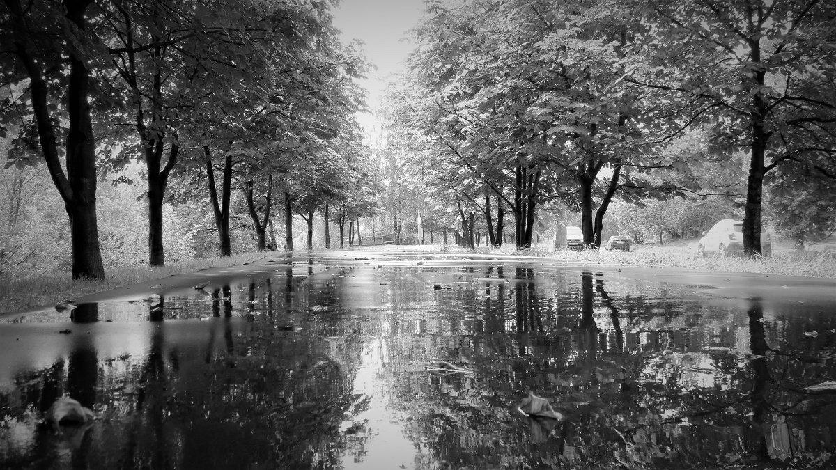 Летний  дождь - Алексей Халдин