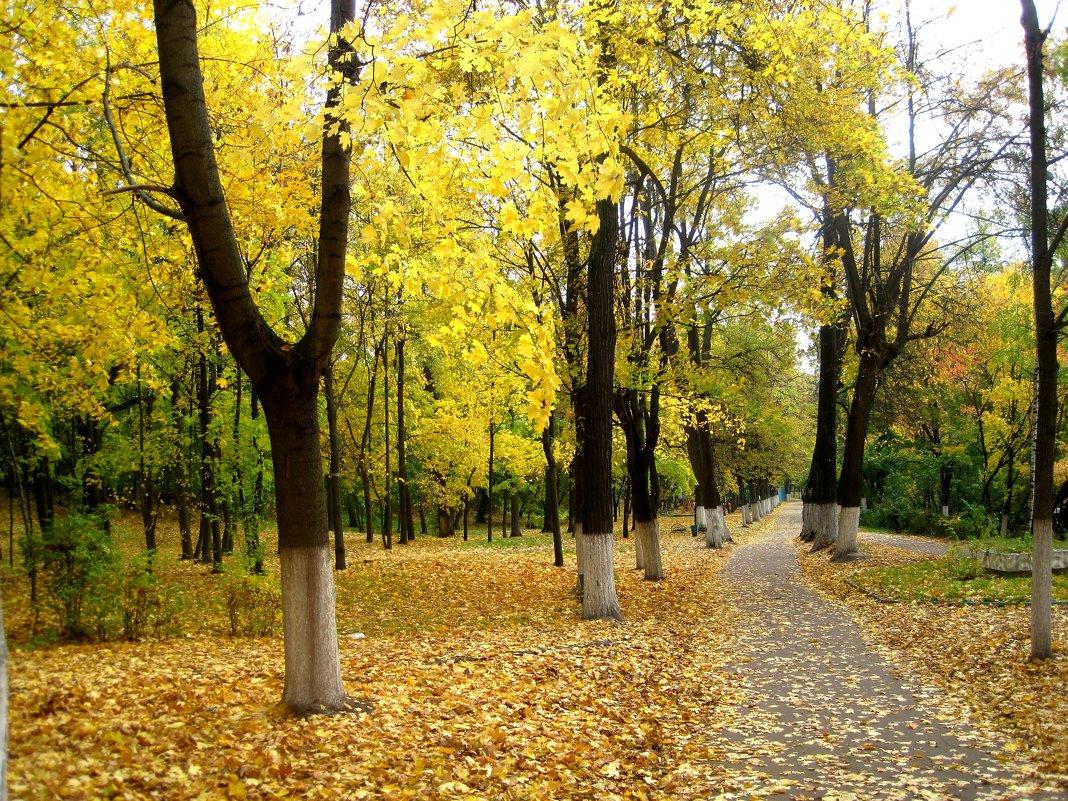 В парке осенью - Елена Семигина
