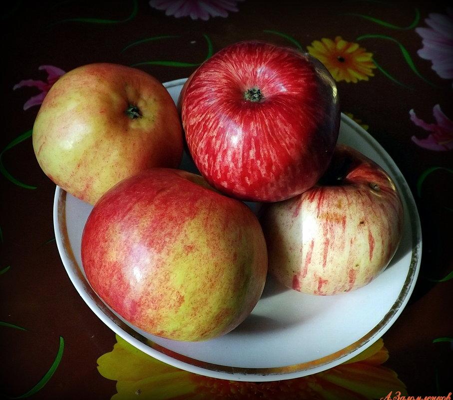Яблочки наливные - Андрей Заломленков