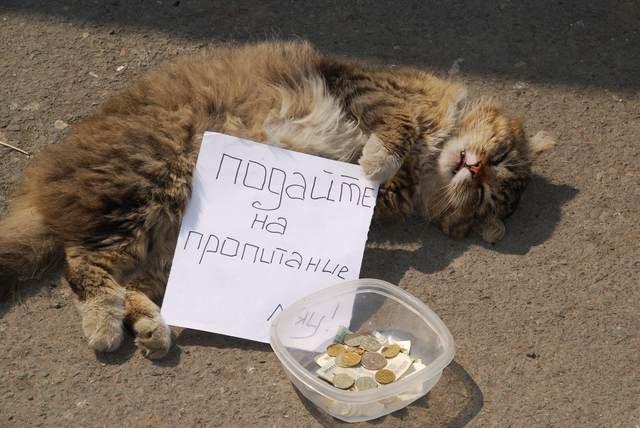 Владивосток - Сергей Анчуткин